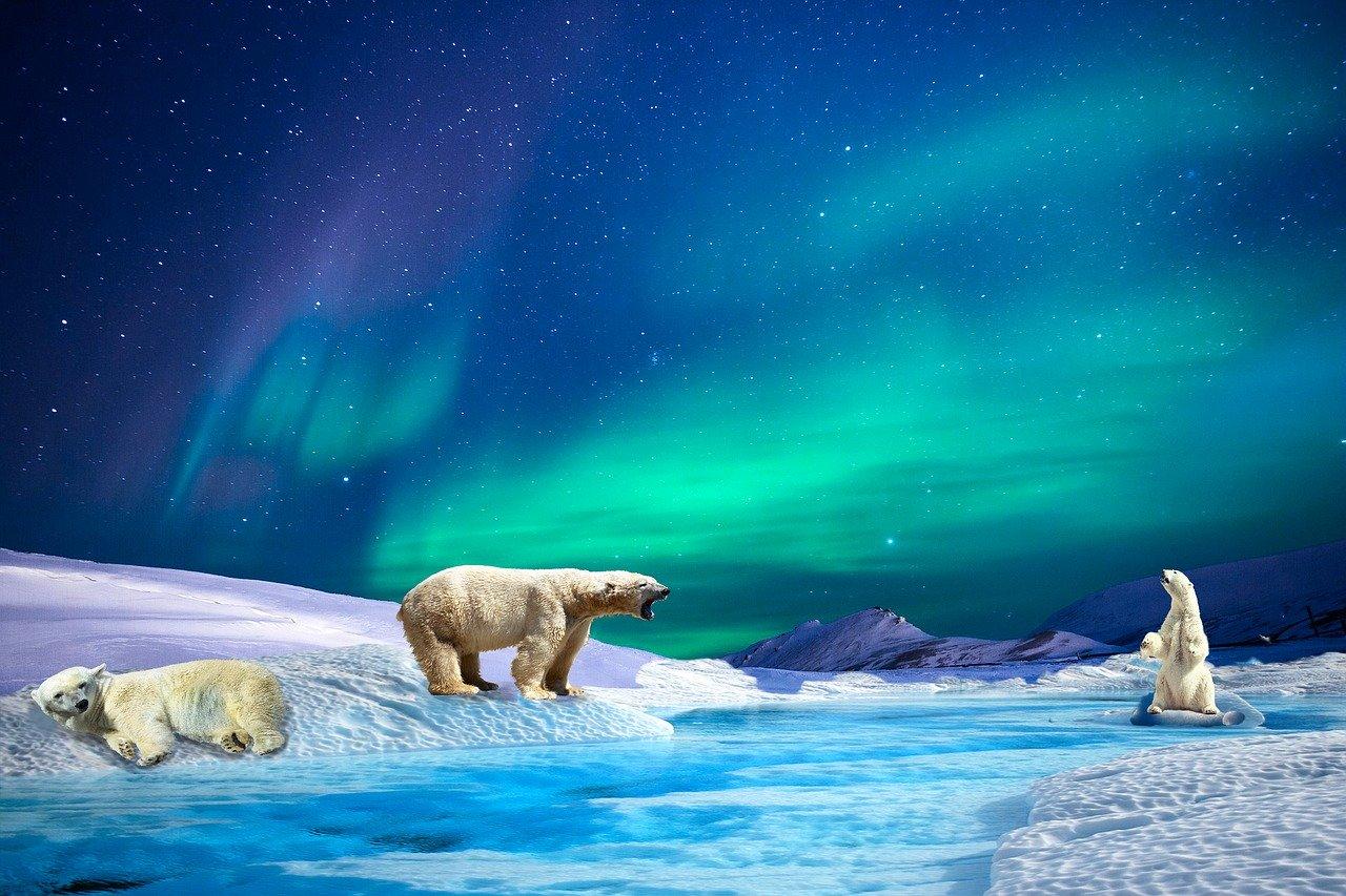 crisstel.ro Imaginile aurorei boreale Polulu A-Star 32U4, Arduino Leonardo, ATmega32U4, HMC5883L, magnetometru pe trei axe, Arduino Micro, Neopixel Jewel,